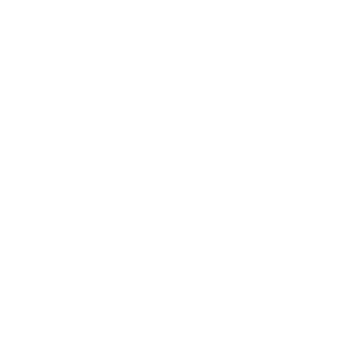 Acquia Foundation Plus Partner